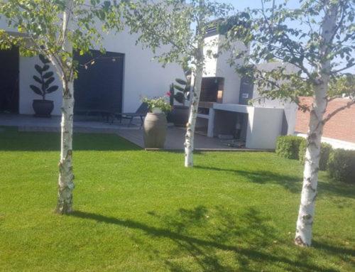 Jardín con Tepes